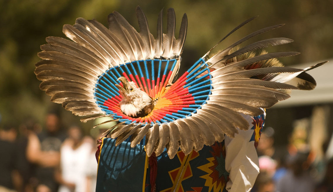 Nico Phoenix was a competitor in the Teen Boy's Traditional Dance competition. The 38th Annual Stanford Powwow, Eucalyptus Grove, Stanford University.