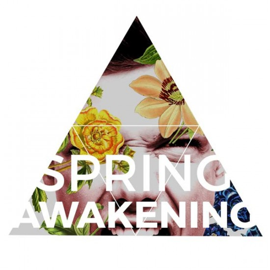 analysis ofthe play spring awakening by frank wedekind essay Spring awakening (play)'s wiki: spring dramatist frank wedekind's first major play and a seminal work in of his friend and the discovery of the essay.