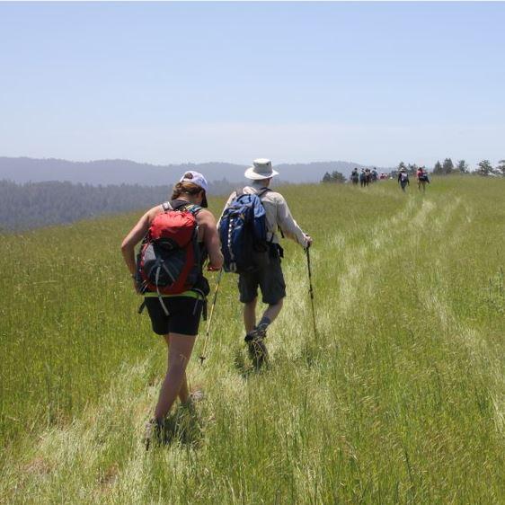 Stanford Walking Tour Registration